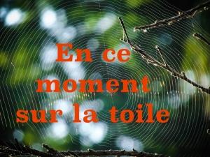 en_ce_moment_sur_la_toile